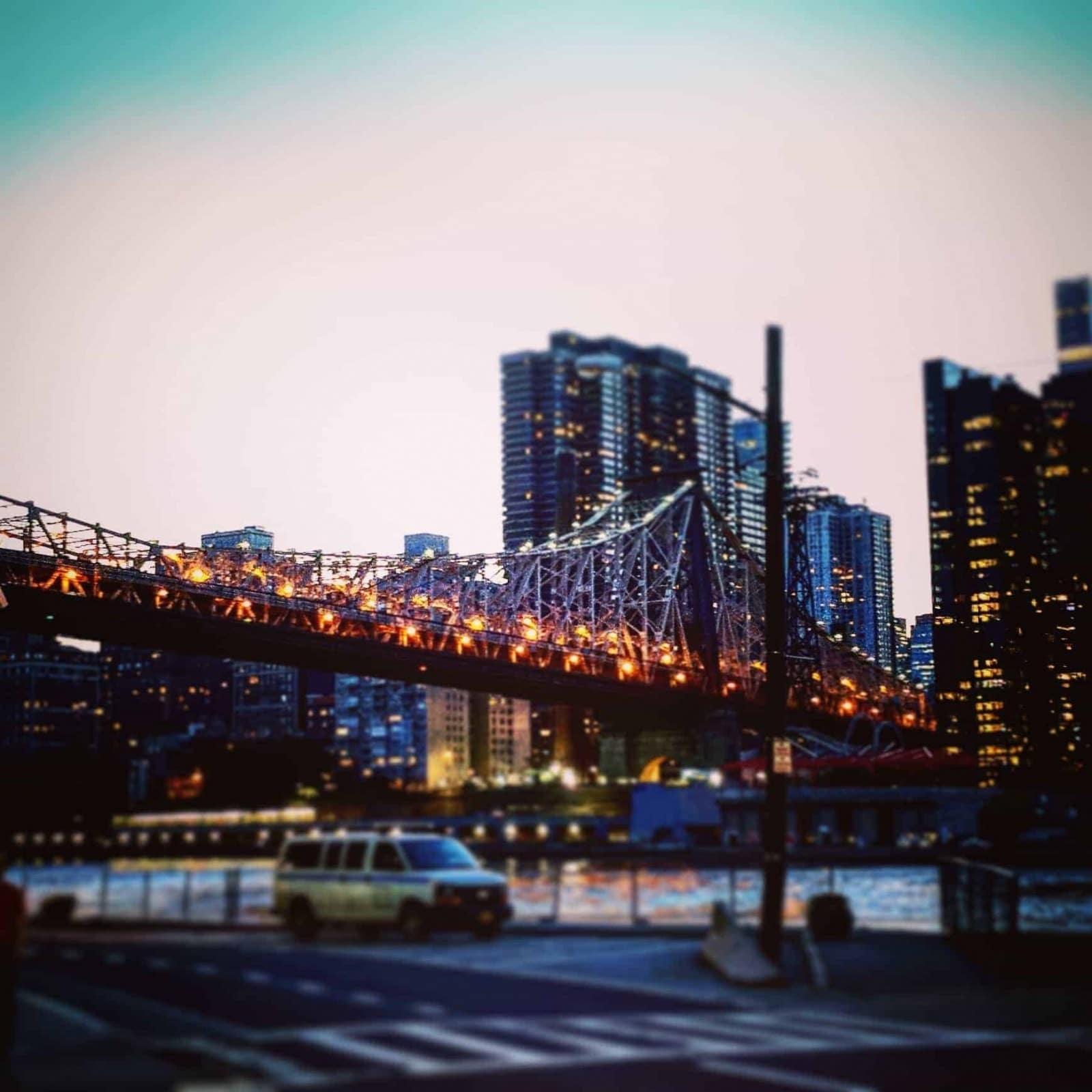 New York: a Bridge (photo by Ruthanne Reid)